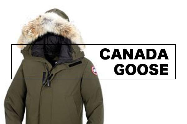 カナダの寒さを凌ぐには やっぱりカナダグース!