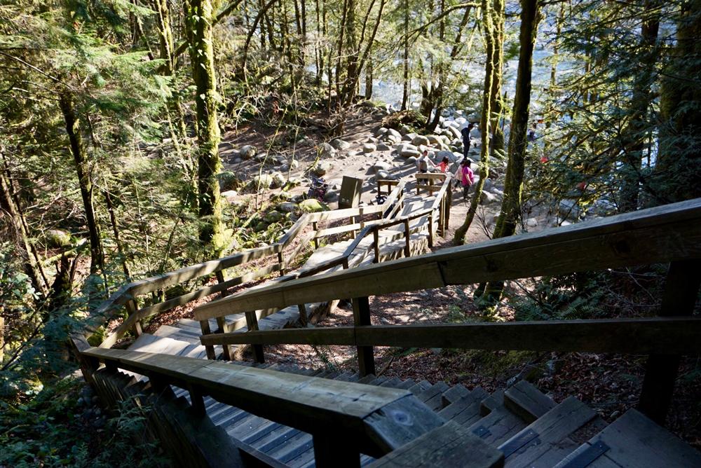 Lynn Canyon Parkで自然を満喫! | VANJA