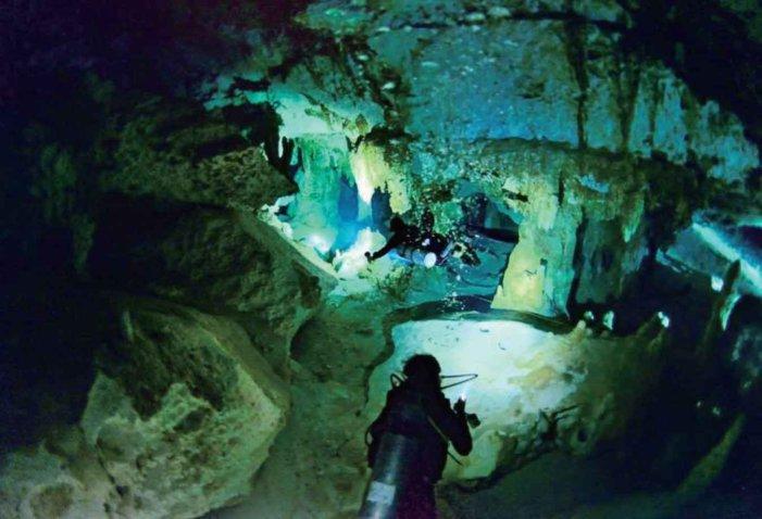ブタ・サメと泳ぐ?! カリブの秘島・世界遺産・隠れスポットでゴージャスでリッチな体験を!|寒いトロントをいざ脱出!カリブ海特集