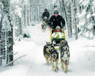 アクティブに過ごす!!冬を楽しむ ケベック州ウィンターアクテビティースポット紹介