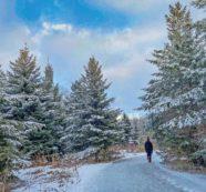 歴史遺産の街、ユニオンビル(Unionville)―散策とハイキング  紀行家 石原牧子の思い切って『旅』第50回