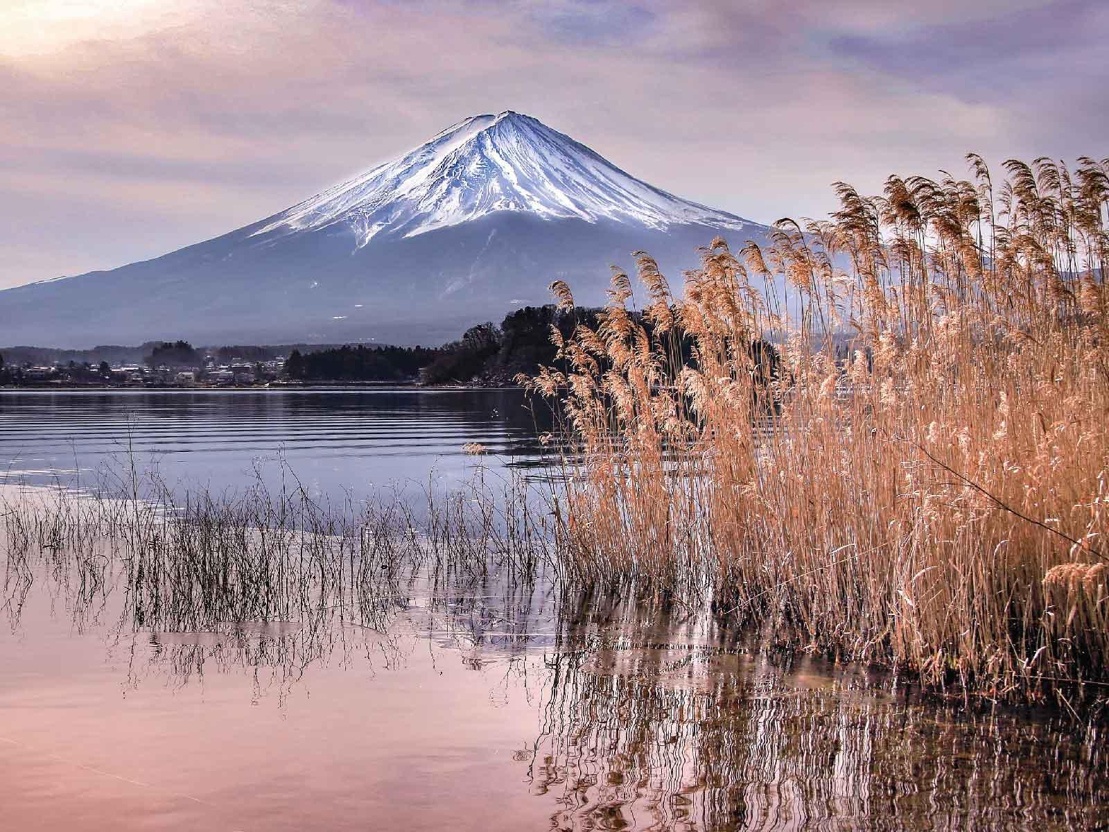 大石公園から見た富士山(秋景色)