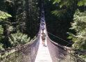 バンクーバーの観光スポット:入場料不要の自然公園「Lynn Canyon Park」