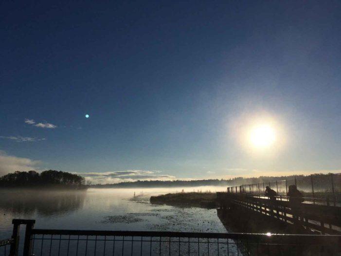 山と海に囲まれて自然豊かな街!おすすめ絶景スポット|UBC女子大生がおくるバンクーバーライフ
