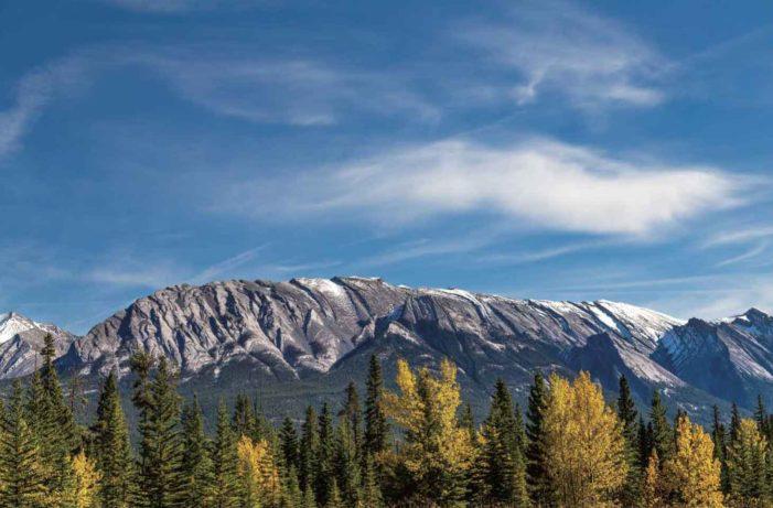 ブリティッシュ・コロンビア州のリットンでカナダ史上最高気温となる47.5℃を記録|トレンドを追え!WHAT'S HOT